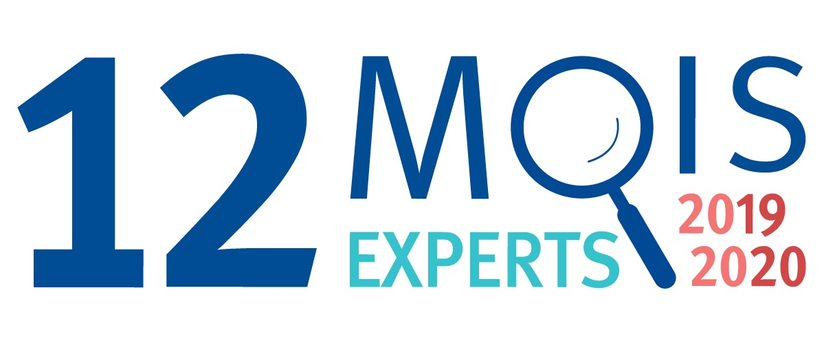 12 mois 12 experts logo